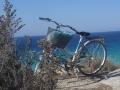 bike crop