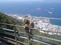 Gibraltar30